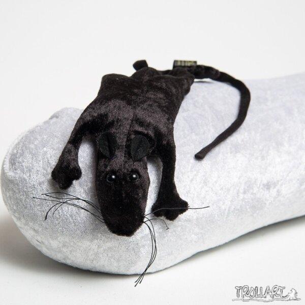 Pet rat, black